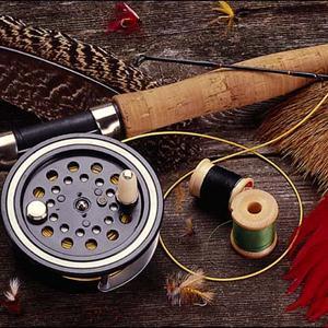 Охотничьи и рыболовные магазины Залесово